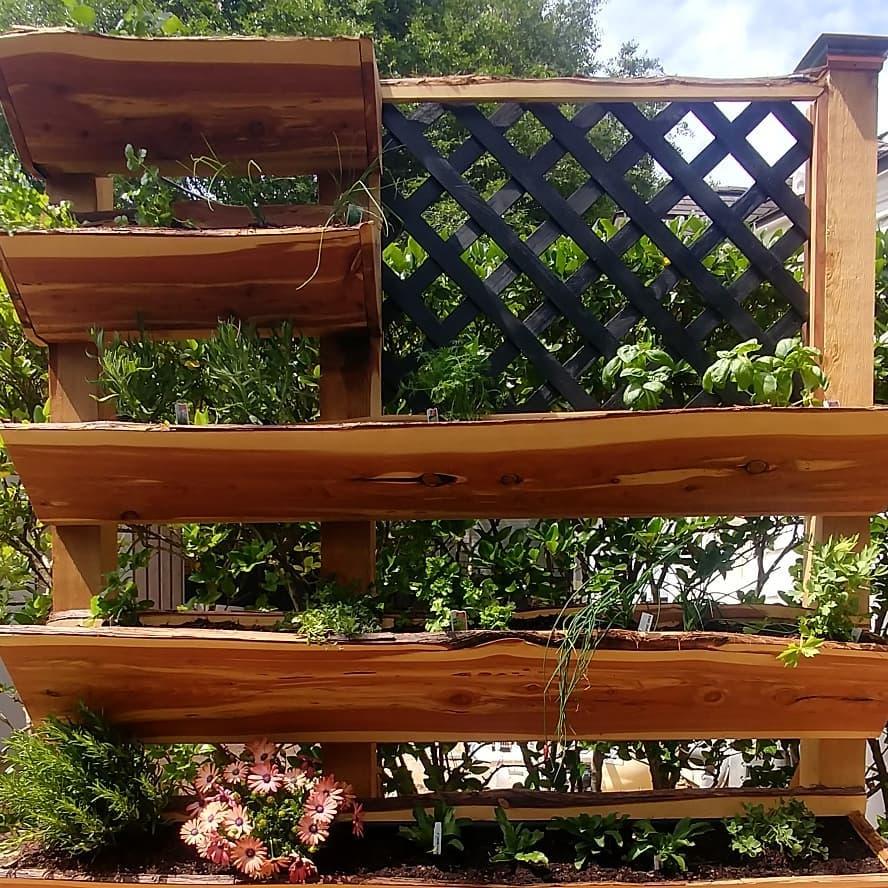 live-edge-hanging-garden